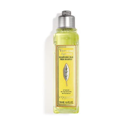 L'occitane Citrus Verbena Şampuan - Citrus Verbena Fresh Shampoo
